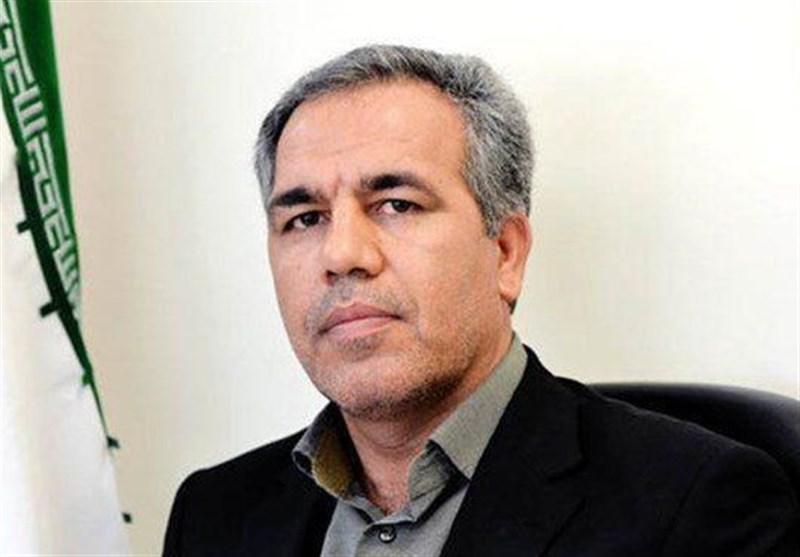 عرب: وزارت ورزش مصمم به خصوصی سازی پرسپولیس و استقلال است، آماده هرگونه همکاری با سازمان خصوصی سازی هستیم
