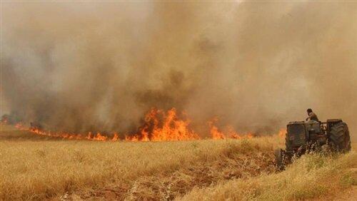 آتش زدن مزارع جرم است
