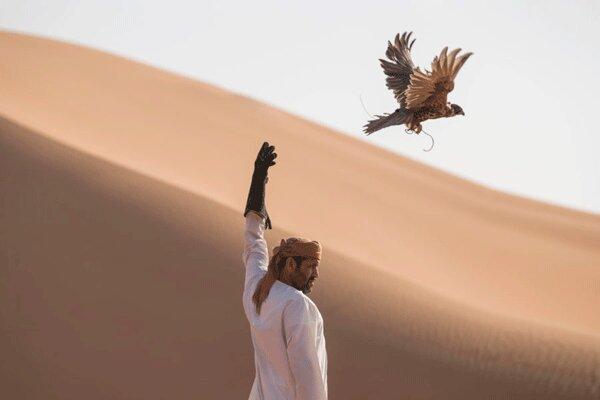 هشدار درباره قاچاق حیات وحش سمنان به کشورهای حوزه خلیج فارس